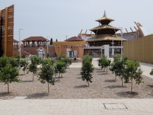 The Nepal Pavilion by the Implementing Expert Group was unfinished on the day of the second big earthquake in Nepal.