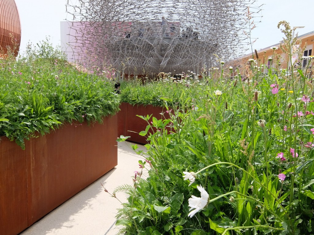 "Wolfgang Buttress and BDP's UK Pavilion works with the trendy metaphor of ""the hive."""