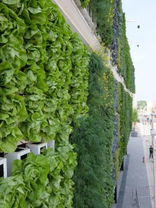 Biber Architects' USA Pavilion has green walls by dlandstudio that undulate mechanically.