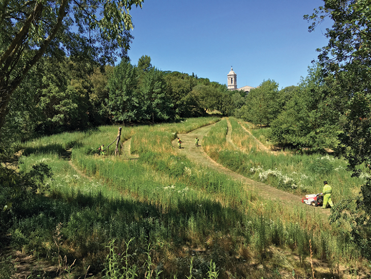 The Can Colomer meadow during its periodic mowing and maintenance. Image courtesy of Estudi Marti Franch.